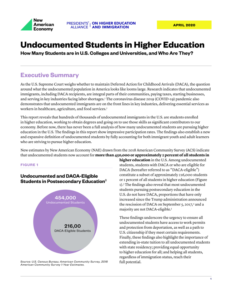 PAHEI NAE Undocumented Students HigherEd_brief_